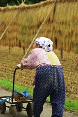 田舎のおばあちゃん