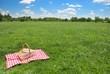 Leinwandbild Motiv picnic setting on meadow with copy space