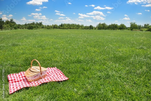picnic setting on meadow with copy space - 17317788