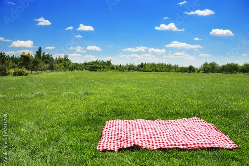 Aluminium Picknick picnic cloth on meadow with copy space