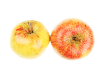 Two organic apples