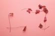 枯れ葉のフレーム