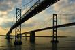Twin Chesapeake Bay Bridges - 17335734