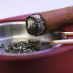 Zigarre im Ascher