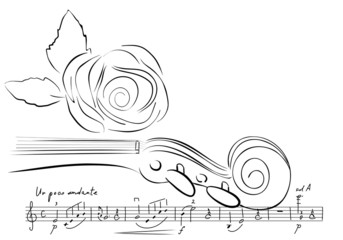 violin and rose lines. vector