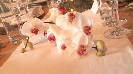 Orchidee als Tischdekoration