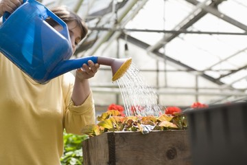 Woman watering flowers in greenhouse