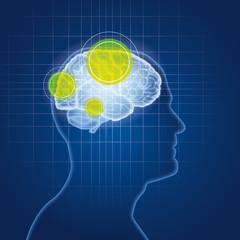Menschliches Gehirn und Neurologie