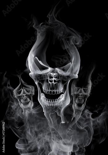 Foto op Aluminium Rook Skull