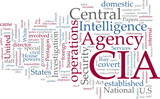 CIA Central Intelligence Agency poster