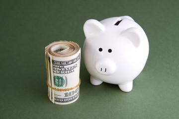 Piggy Bank and Cash