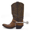 Cowboy Boot - 17391735
