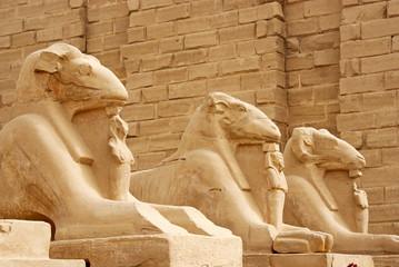 Avenue of ram-headed sphinxes, Karnak Temple, Luxor
