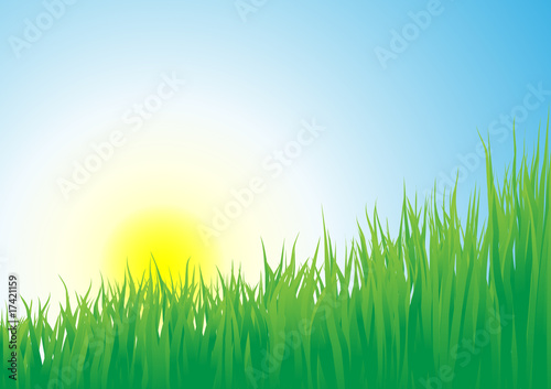 sunrise_and_grass