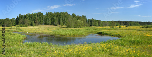 Panorama, a landscape with a meadow and a stream.