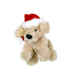Doggy Santa Clause ready fro Christmas poster