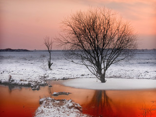 winter lake in sunset