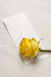 Yellow rose on a pillow