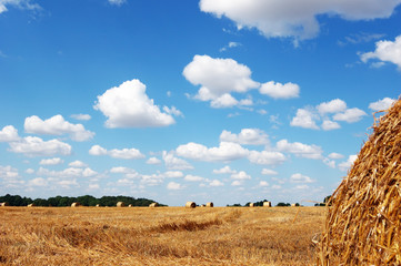 Golden field with hay bales against a picturesque cloudy sky