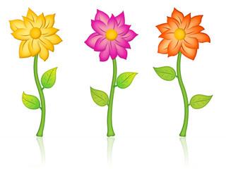 imagen con tres flores coloridas
