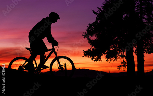 Mountainbike - 17510528