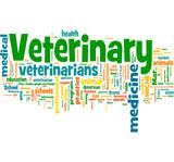 Veterinary poster