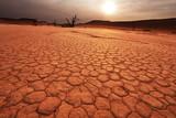 Namib on sunset