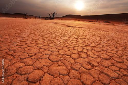 Plexiglas Droogte Namib on sunset