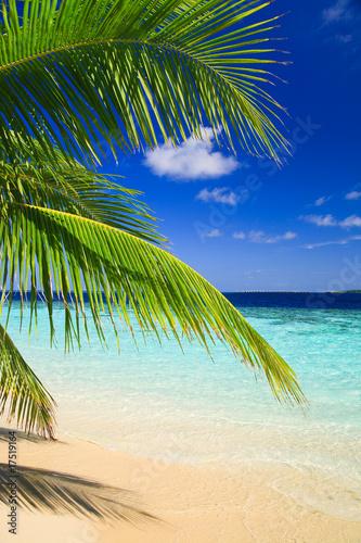 tropikalny-raj-na-malediwach