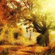 Fototapeten,september,natur,landschaft,fallen