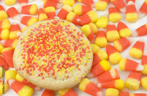 Sugar Cookie on Candy Corn Background