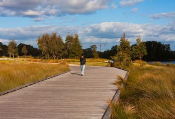 timber walkpath