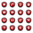 Red Glossy Vector Button Set 1