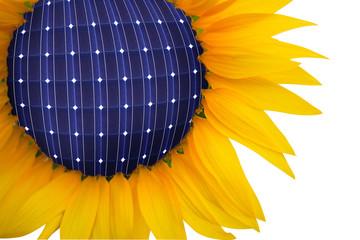 girasole solare
