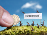 ants demand payment poster