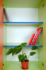 bookcase with books and a plant