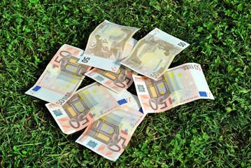 Banconote sull'erba