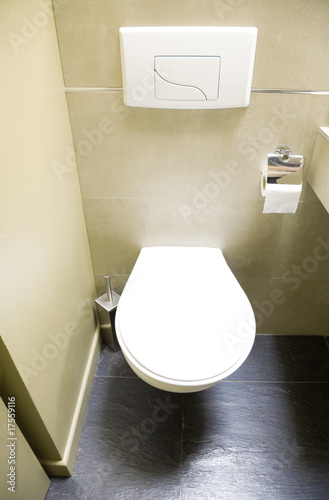 Modern WC with flush press buttons