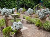 Ensemble de plantes et fontaine dans les jardins du palais poster