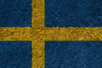 Flag grass SE