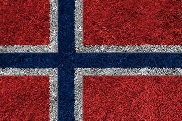 Flag grass NO