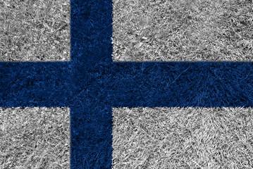 Flag grass FI