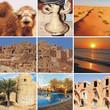 mosaique de tunisie