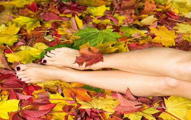 Beautiful woman legs with pedicure in autumn leaves