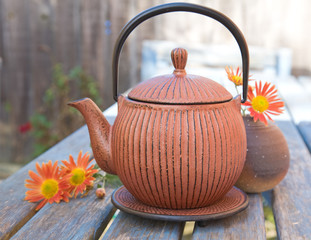 autumn tea - traditional japanese cast iron teapot, tetsubin, an