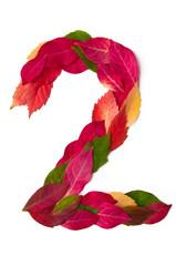 Blätterzahl 2