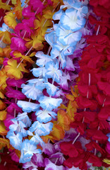 Flower lei background