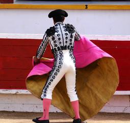 Bullfighter Warming Up