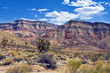 Paiute Wilderness on the Virgin River Gorge