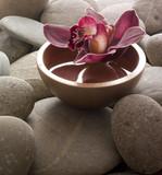 Fototapety orchidée posée sur des galets zen
